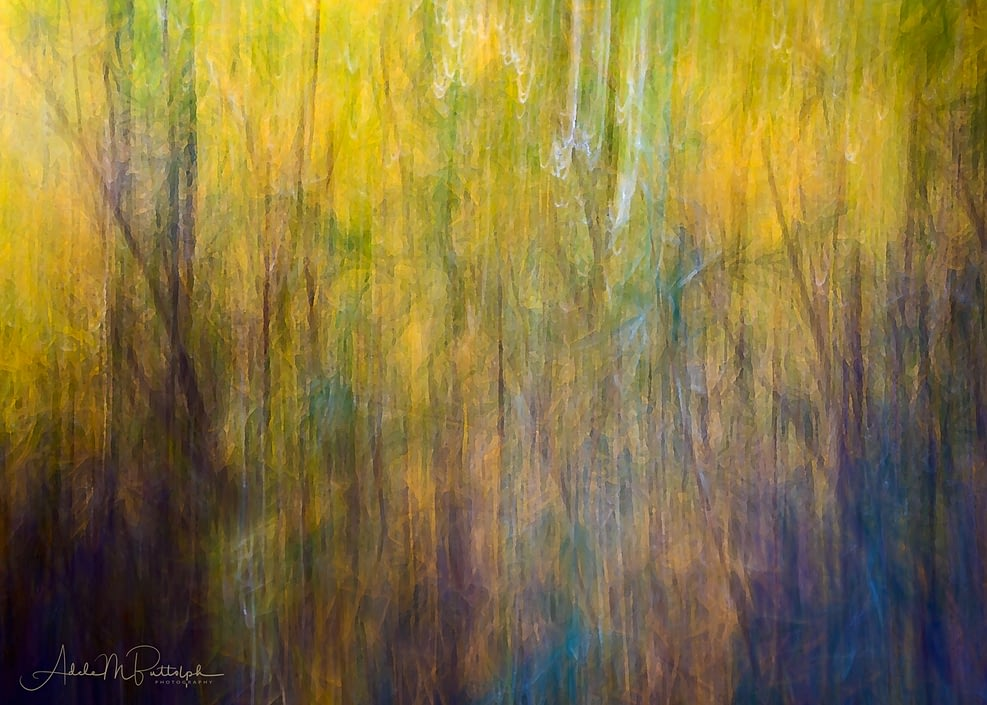 By the Stream by Adele Buttolph