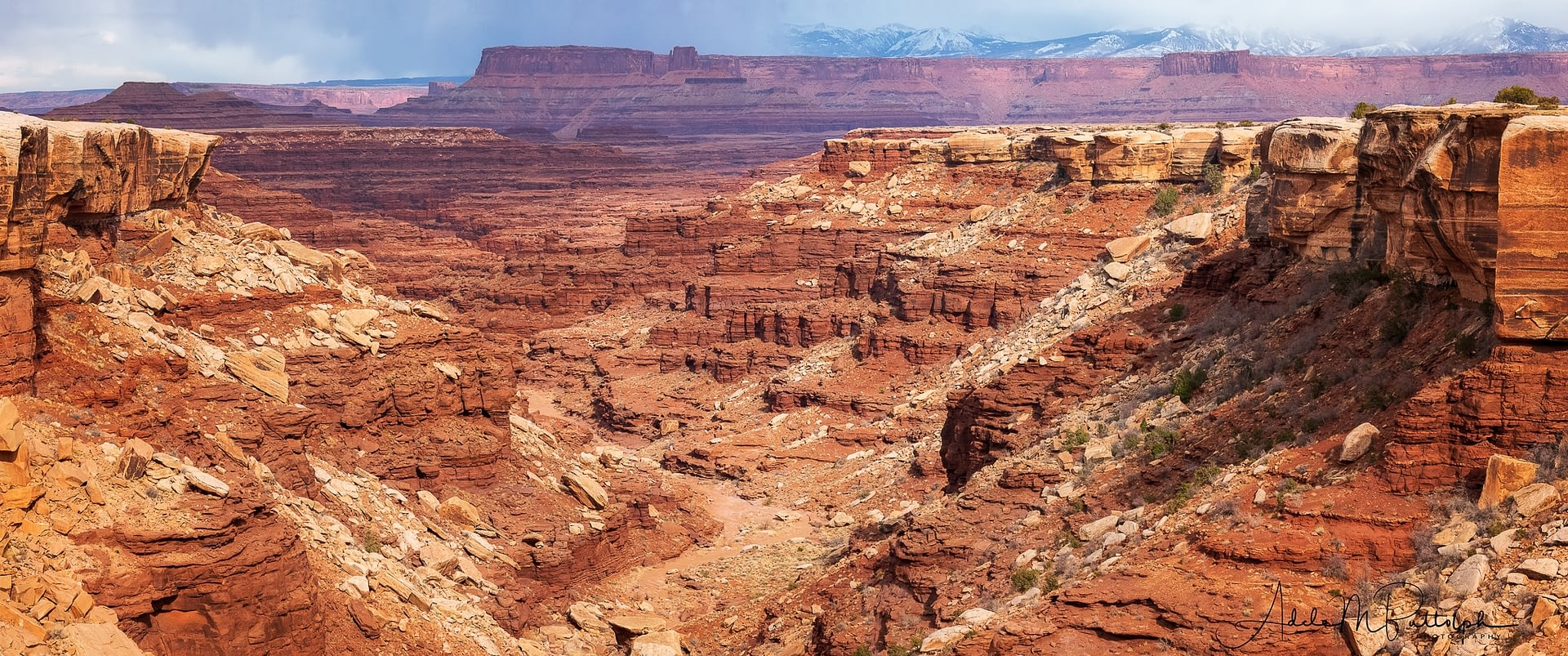 View into Canyonlands National Park from White Rim Road