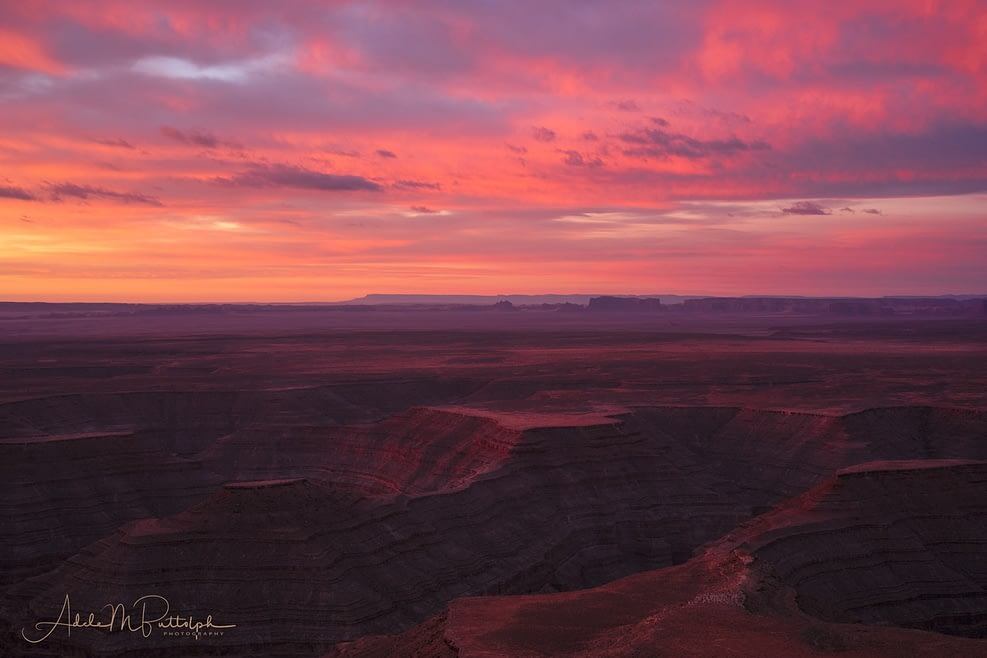 Dawn from Muley Point by Adele Buttolph