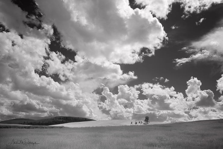 Infrared photograph of cumulus clouds over rolling hills of the Zumwalt Prairie, Oregon