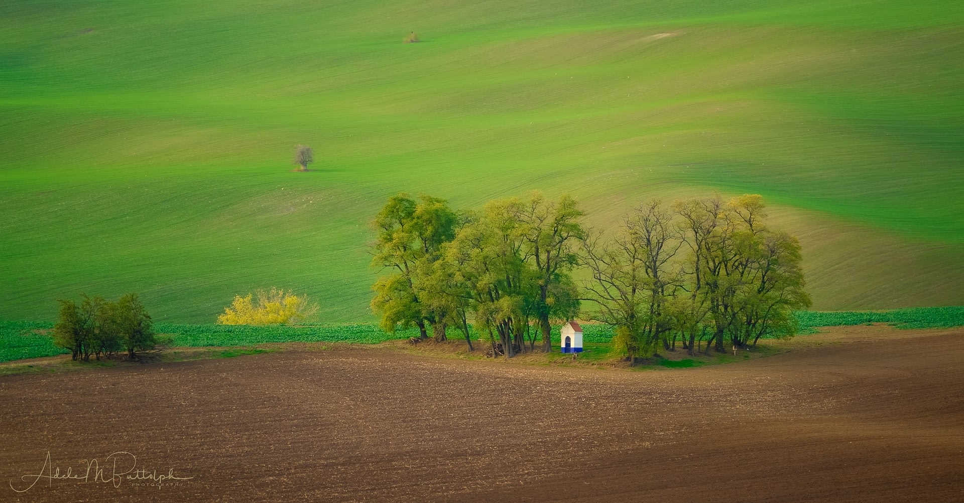 Saint Barbara Chapel sits in a grove of trees, Moravia, Czech Republic.