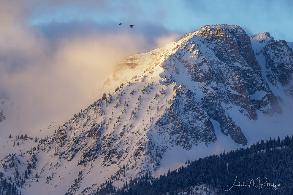 Morning Light on Wallowa Mountains by Adele Buttolph