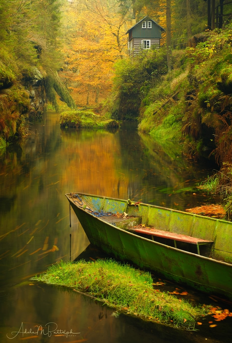 Kamenice River Gorge by Adele Buttolph