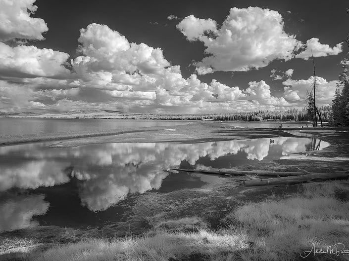 Black and white infrared photograph of Yellowstone Lake, Yellowstone National Park, Wyoming.