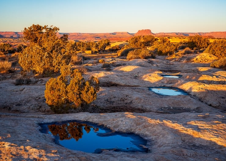 water-filled potholes at dawn near the White Crack camping area