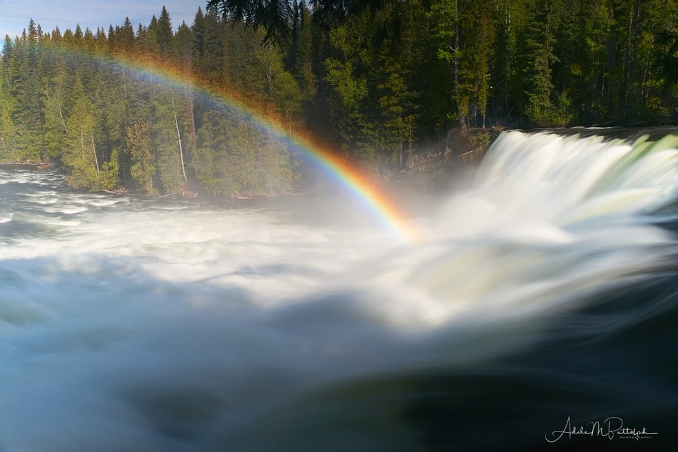 Dawson Falls by Adele Buttolph