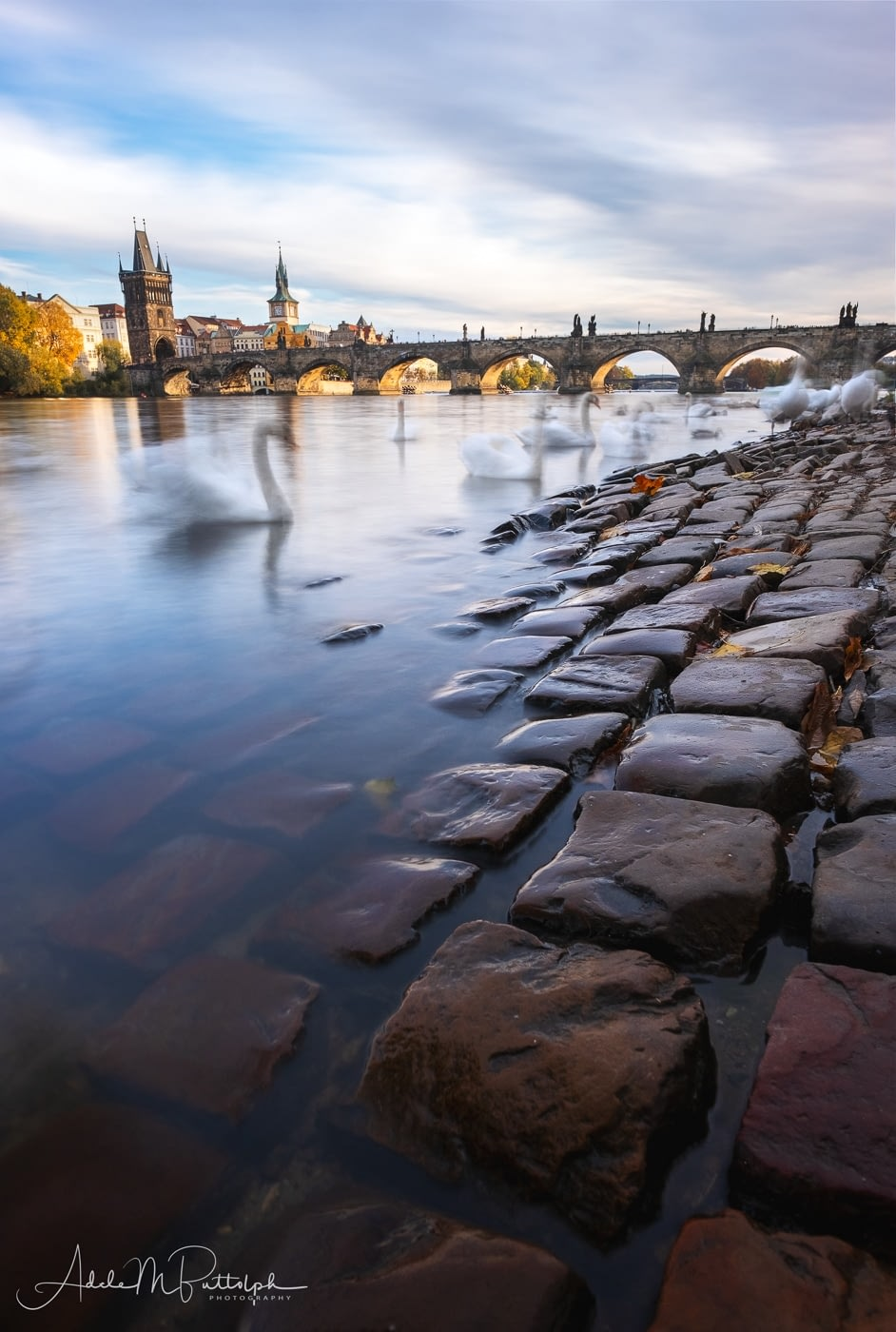 Bank of the Vltava River by Adele Buttolph