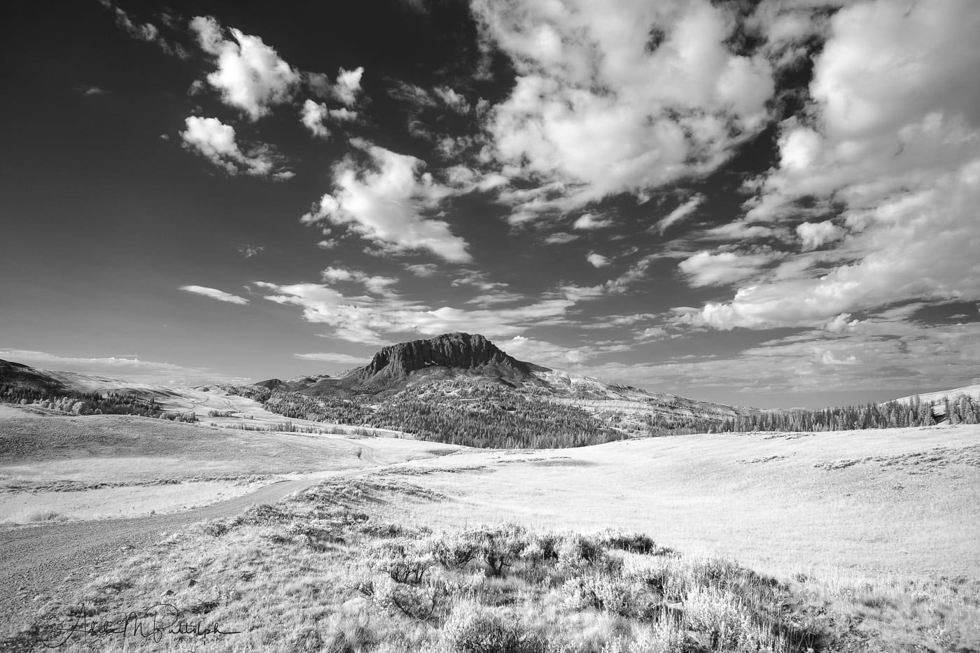 Black and white infrared photo of Black Butte, located in teh Gravelly Range, Montana.