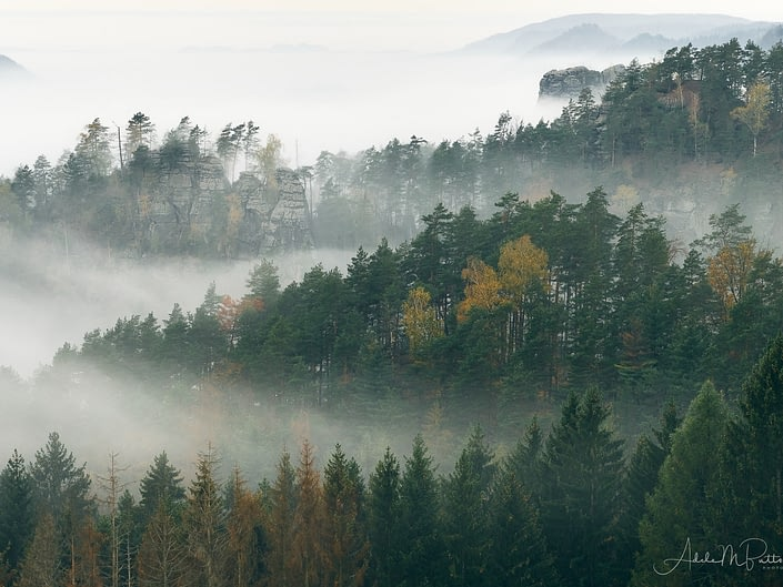 Morning Fog Czech Republic