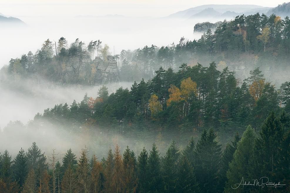 Morning Fog Czech Republic